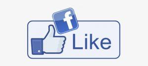 Segui la Pagina Facebook dedicata!